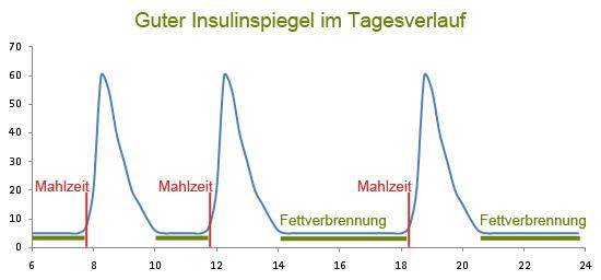 Guter-Insulinspiegel-im-Tagesverlauf