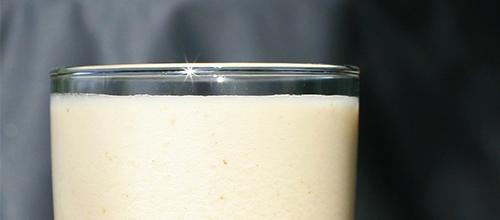 Vibono-Shake-mit-Flohsamenschalen2