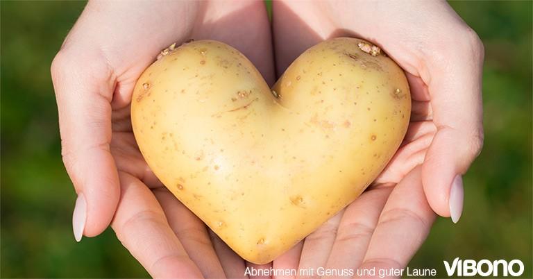 Kartoffeln  - Aktuelles Thema in der Vibono-Gruppe