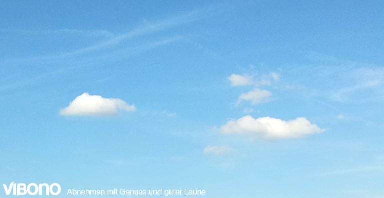 Blauer Himmel - Mein Schweinehund will nach draußen