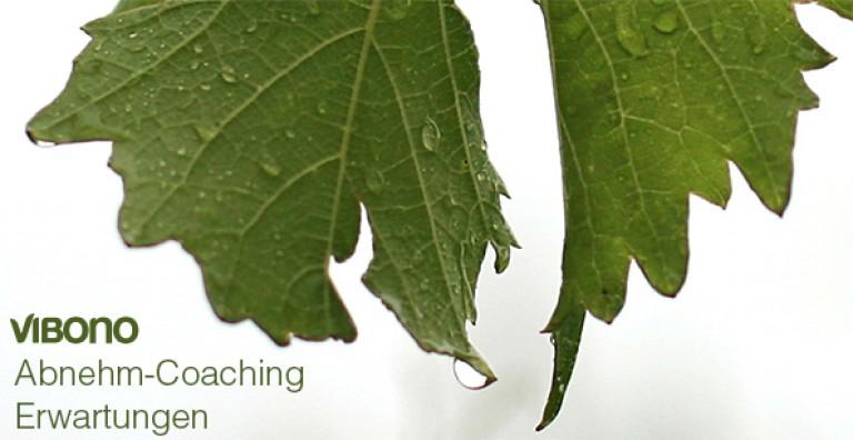 Erwartungen - Vibono Abnehm-Coaching Januar 2014