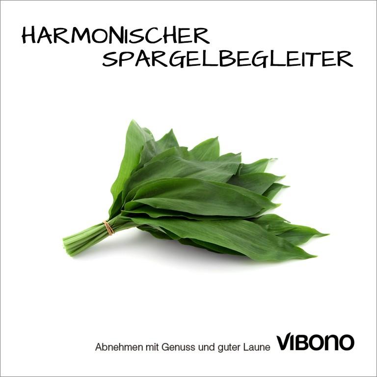 Bärlauch, harmonischer Spargelbegleiter Nr. 12