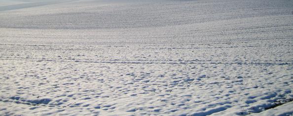 Harte Winter für unsere Urahnen