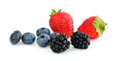 Süße Beeren – Das Belohnungssystem (2)