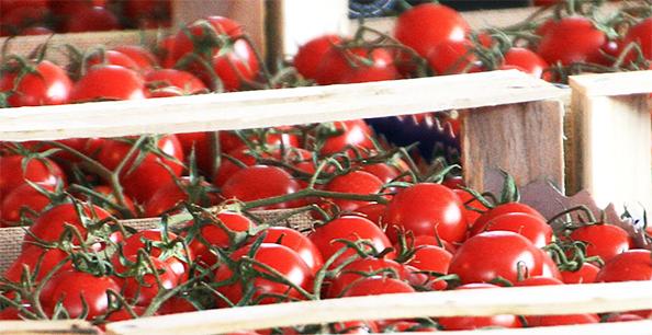 Leichter abnehmen mit Tomaten