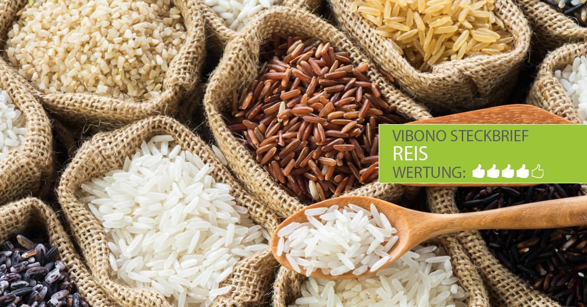 Reis-Steckbrief