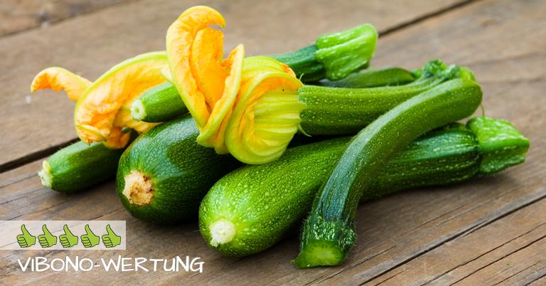 Zucchini-Steckbrief