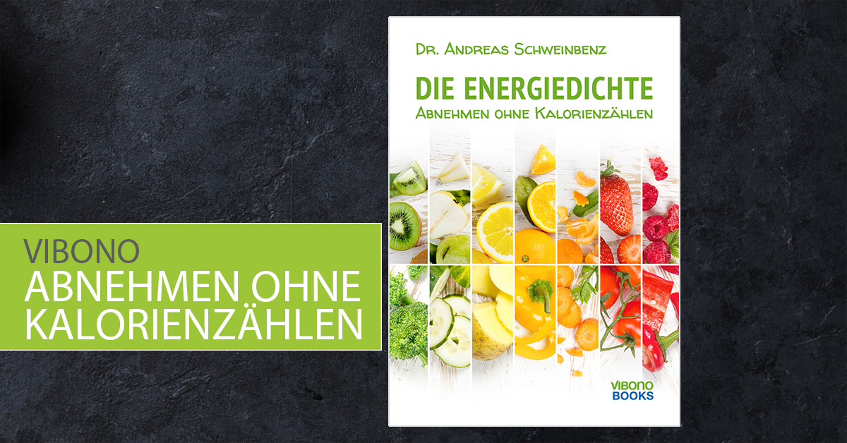 Energiedichte E-Book