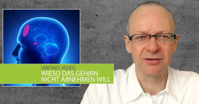 Wieso das Gehirn nicht abnehmen will